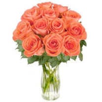 Bunch of Orange Roses Bliss (without vase)